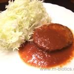 三育フーズ野菜大豆バーグ