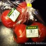 有機栽培トマト
