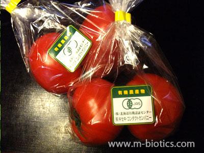 トマトでマクロビオティックを思い出す~塩を振って陽性化