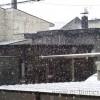 雪虫が飛んだ翌日、初雪が降った~有機栽培りんごシーズンの到来