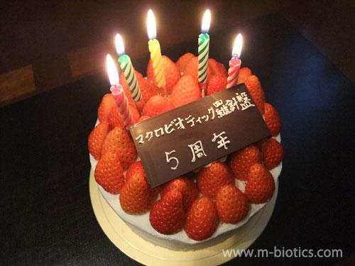 【サイト開設5周年記念】特注の苺デコレーションケーキで祝う~ケーキの上を苺で埋め尽くす