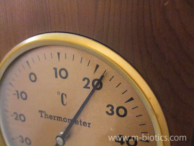 5月。暖房を入れていないのに室温22℃~旭川にも春が来た