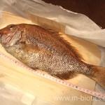 鯛の浜焼き矢野鮮魚