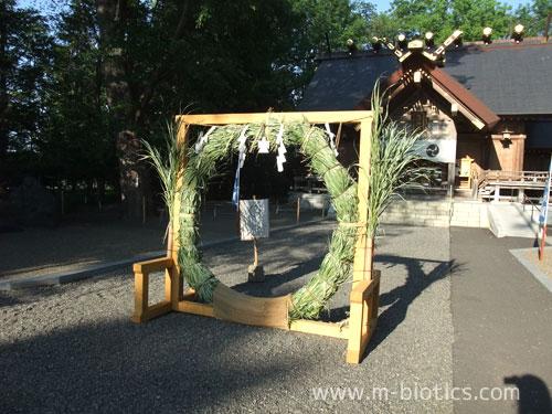 神社にあった謎の輪~夏越大祓「茅の輪くぐり」と蘇民将来のつながり