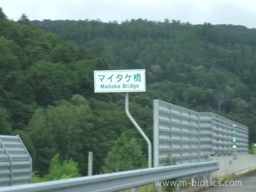 愛別町「マイタケ橋」「シメジ橋」「エノキ橋」の激写を試みる