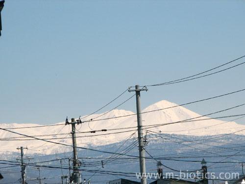 家の窓から見える高い山が、北海道最高峰「旭岳」だと初めて知った