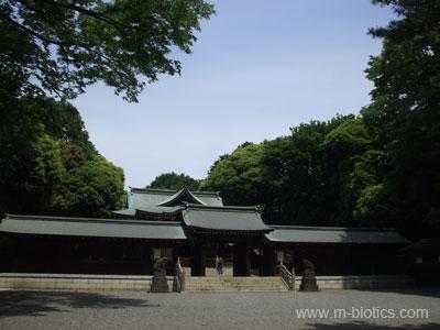 井草八幡宮:マクロビオティック羅針盤