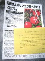 竹嶋有機農園のりんごジョナゴールド
