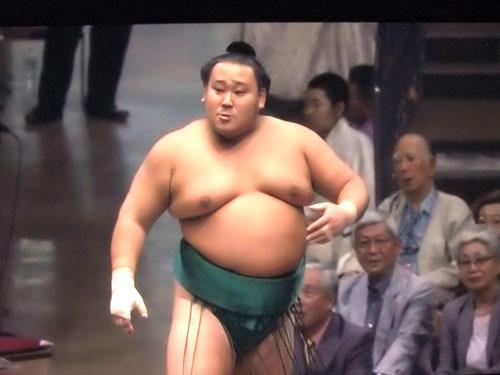 相撲 取り あび