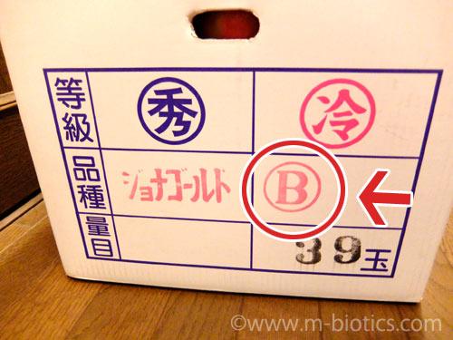 竹嶋 有機 りんご B級品