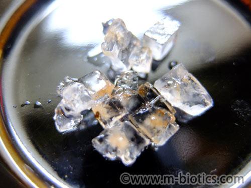 湯戻し 塩を吹いた 梅干し 戻す 方法 古い 固い