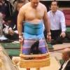 【大相撲】私の中の「素敵な化粧まわし」ランキングNo.1は阿夢露(アムール)