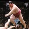 【大相撲】遠藤が、ずっと勝てなかった大学時代の先輩力士(常幸龍)に初勝利【2015初場所】