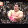 「遠藤」の登場で大相撲に生まれて初めて興味を持つ【2013年9月】
