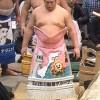 【大相撲】ひゃくまんさん化粧まわしは遠藤に似合う&栃ノ心戦で顔をすりむきながら勝利【2015初場所】