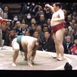 【大相撲】遠藤が髙安に「はたき込み」で勝利~土俵際でバランスを取るポーズが可愛い【2015初場所】