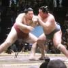【大相撲】遠藤が左膝に爆弾を抱えながら初白星~心の強さに胸を打たれる【2015.5夏場所】