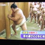 【大相撲】鉄砲(てっぽう)のやり方~足を柱に寄せて、同時に手を突く