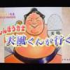 【大相撲】天風が歌う「Get Wild」~アニメ「シティーハンター」が好きなのかも?