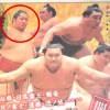 【大相撲】札幌場所(2015年8月)の新聞広告がモノクロからカラーになって気合い十分~遠藤参加見込み