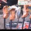 囲炉裏の鮭(サケ)串焼きが「切り身」でびっくり&美味しそう~アイヌ民族の法要祭にて