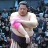 相撲遠藤のピンク好きに影響され、ピンクのチャッカマンを買ってきた母
