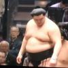 【大相撲】正代の左肘が取り組み中に外側に曲がる~怪我していないか心配【2016初場所】
