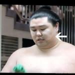 【大相撲】正代が初・結びの一番で白鵬戦に挑む~強烈ビンタで相撲にならず【2016.5夏場所】