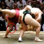 【大相撲】遠藤の左膝が一年半ぶりに復調の兆し~相撲内容が力強いものに変化【2016.9秋場所】