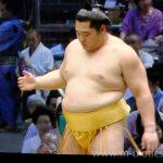 【大相撲】遠藤の黄色(金色)廻し姿に透けて見える優しさ【2017.7名古屋場所】